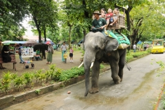 Yangon Zoological Gardens and Parks