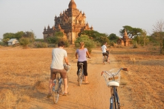Cycle In Bagan