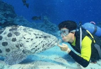 Ngapali Scuba Diving Day